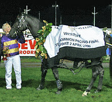 Blacks a Fake Inter Dominion rug