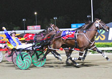 A win for his final race - The Blacks A Fake, Albion Park, 19/07/2014